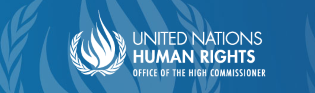 UN rights office issues report on business activities related to settlements in the Occupied Palestinian Territory