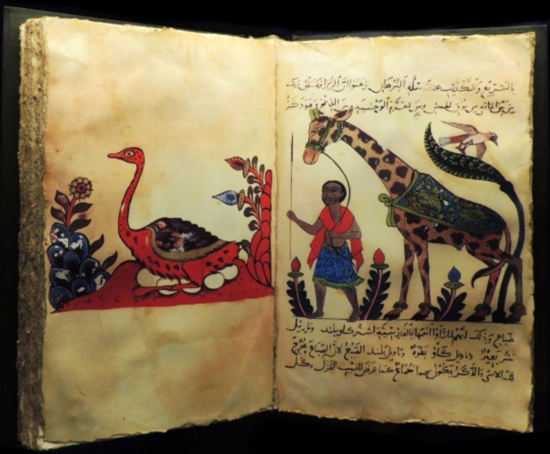 Pre-Darwinian Muslim Scholars' Views on Evolution