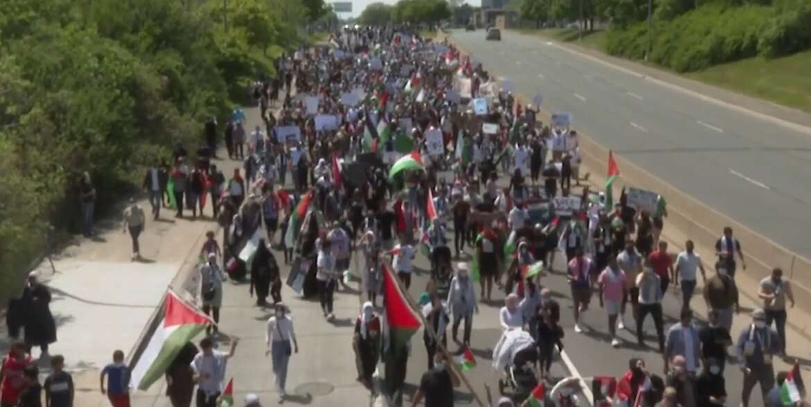 This idea that you could be progressive except for Palestine is falling apart